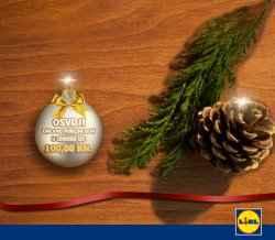 lidl nagradna igra 2013 bozic adventski kalendar